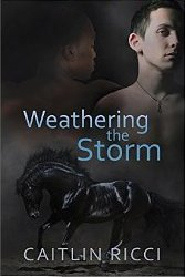Review:  WEATHERING THE STORM by Caitlin Ricci