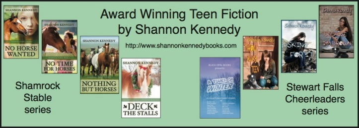 Shannon Kennedy Books DQC
